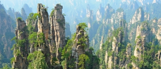 Private one day Zhangjiajie tour